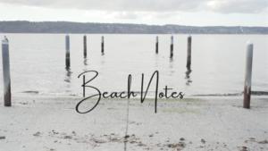 Beach Notes Video